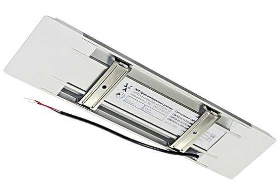 Светодиодный светильник IZ-01.55.010.5240